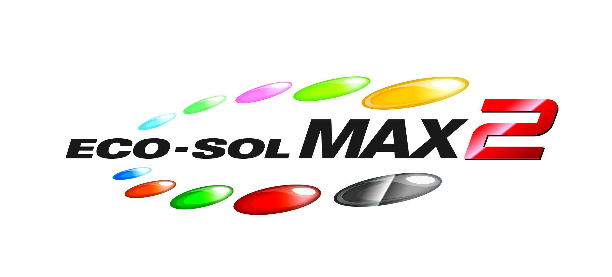 Logo ecosolmax2